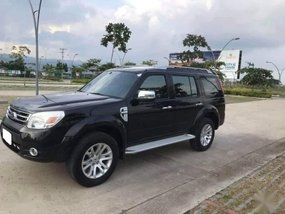 2013 Ford Everest for sale in Mandaue