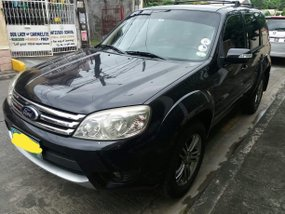 Ford Escape 2010 XLT for sale in Quezon City