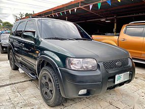 Ford Escape 2002 for sale in Mandaue