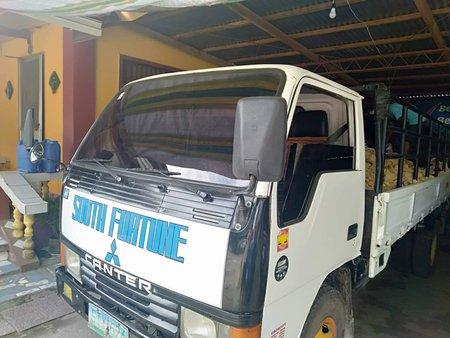 Selling White Isuzu Elf 2004 Truck in Iloilo