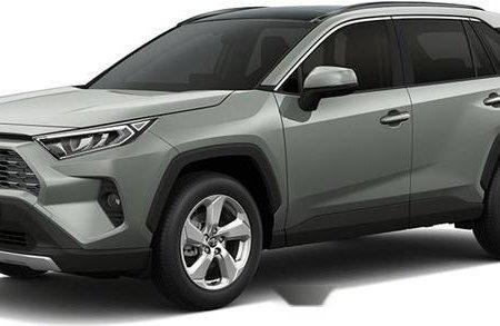 Sell 2020 Toyota Rav4 in Puerto Princesa
