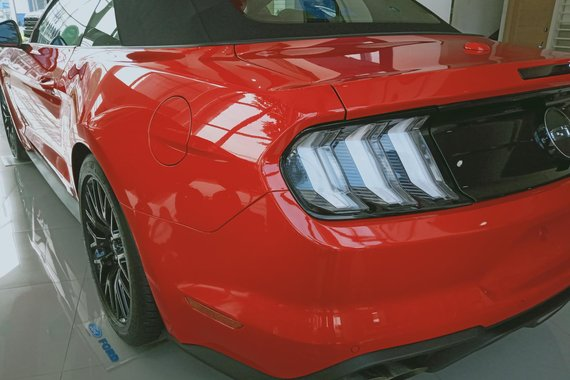 Brand New 2019 Ford Mustang Low Down Payment