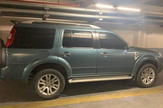 Selling Blue Ford Everest 2014 in Parañaque City